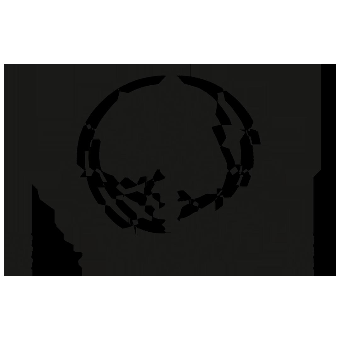 Sennheiser MMD 945 Capsule